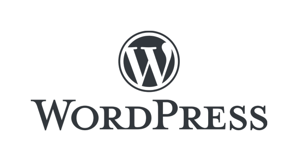 wordpress website support